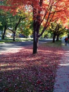 Boise in Fall